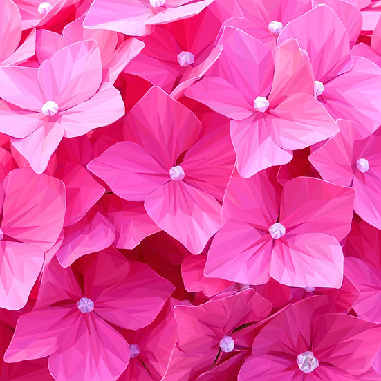Hydrangea (Pink) - Andy Walker