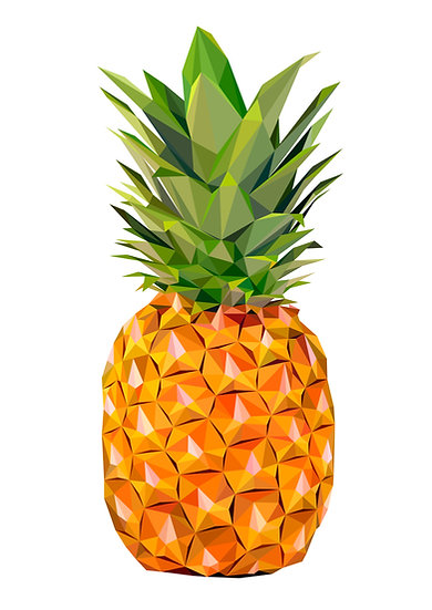 Pineapple - Andy Walker Artist
