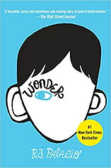 Cover of the book Wonder by R  J Palacio color is blue with boy's face