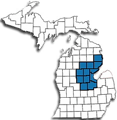 Counties served by Disability of Mid-Michigan