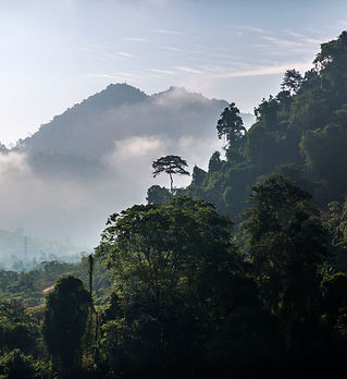 1. Bjergomr├еde i Luang Prabang, Laos.JP