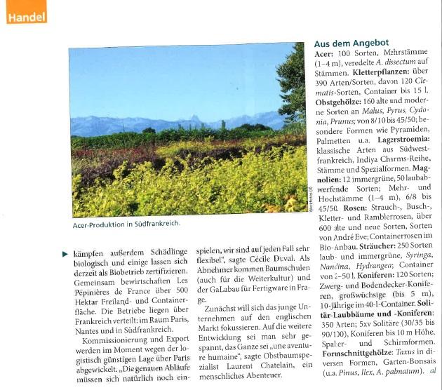 Deutsche Baumschule Zeitung 2
