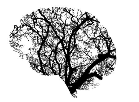Should God's Mind Change?