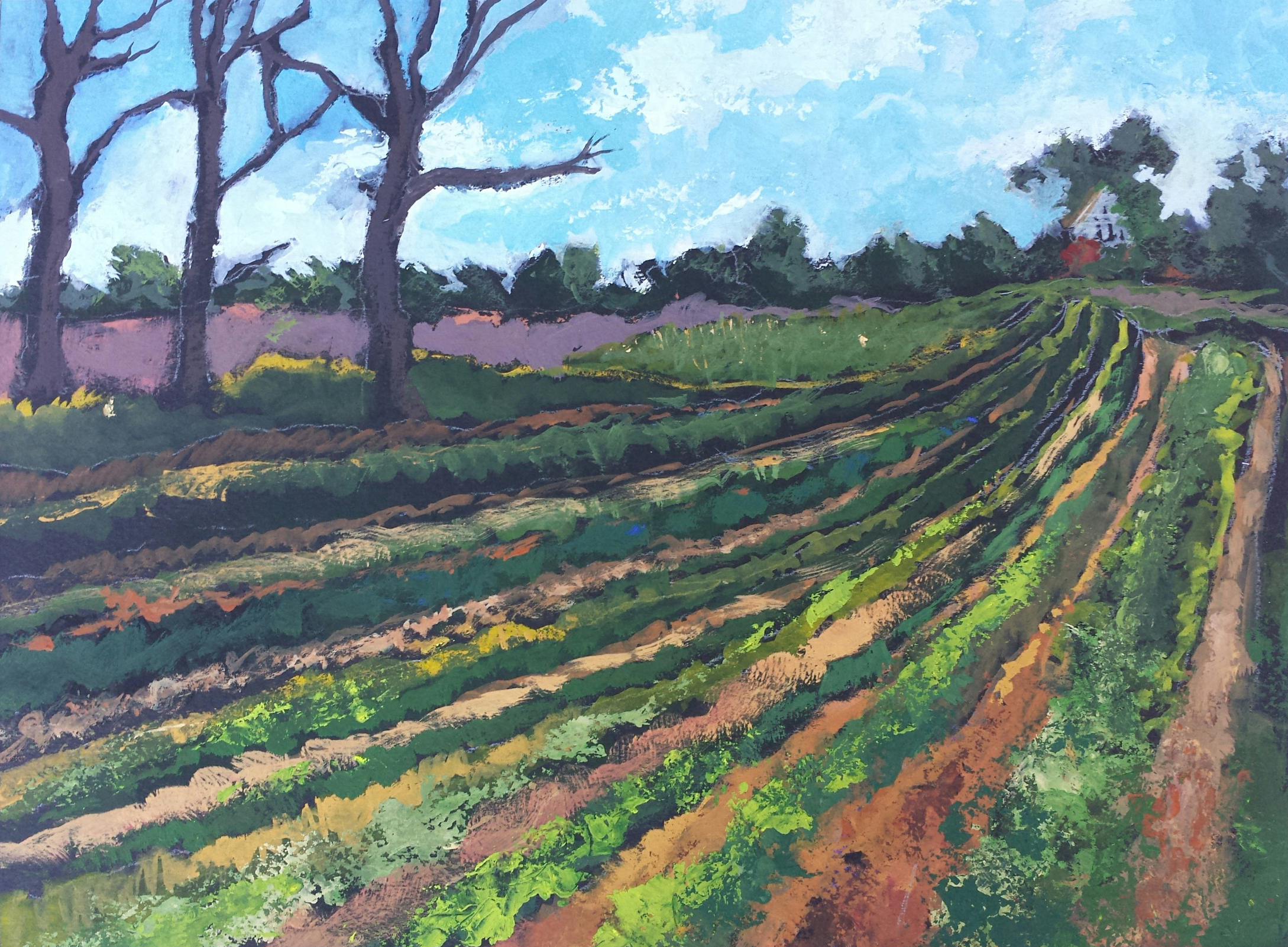 Furrows, Poolesville