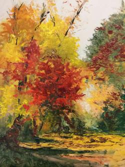 Autumn Path, Washington Grove