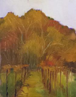 Autumn Vinyard