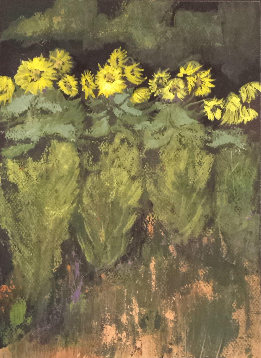 Sunflower Dance
