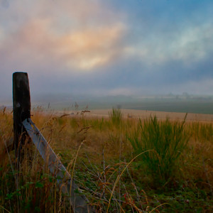 Foggy Morning on Whidbey