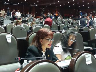 Diputada Claudia Yáñez va por la Protección del Medio Ambiente de Colima