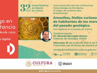 Continúa en el Museo Regional de Historia ciclo de conferencias sobre paleontología de occidente