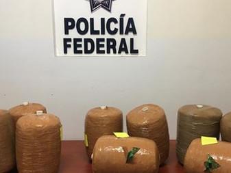 Decomisan 150 kilos de marihuana en Guadalajara