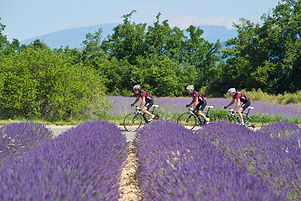 cycling and yoga in provence
