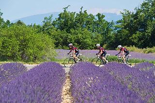 17_provence_cycling_paradise.jpg