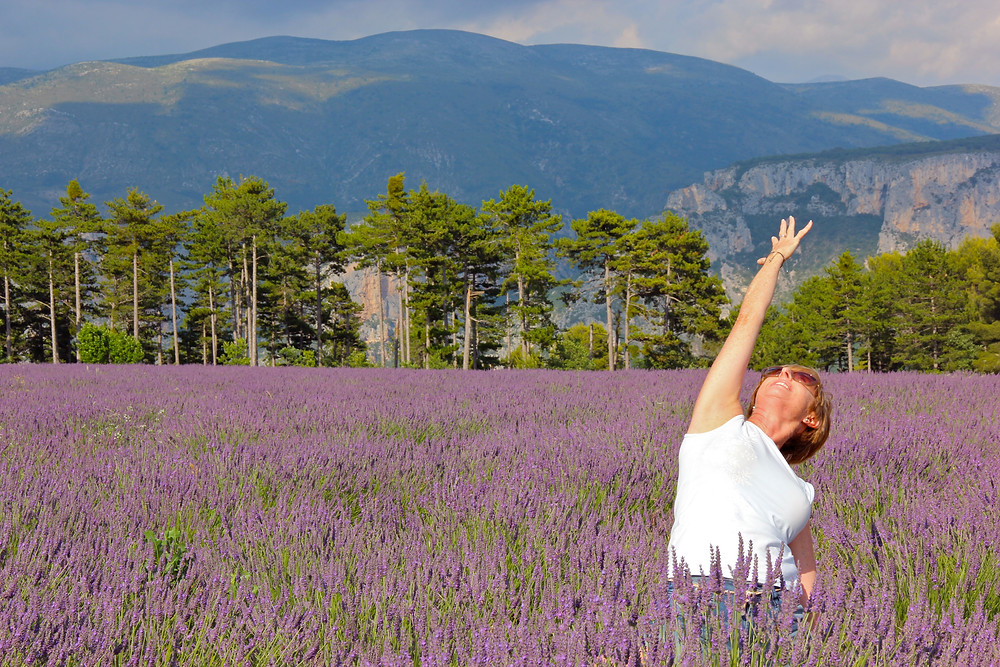 Provence yoga