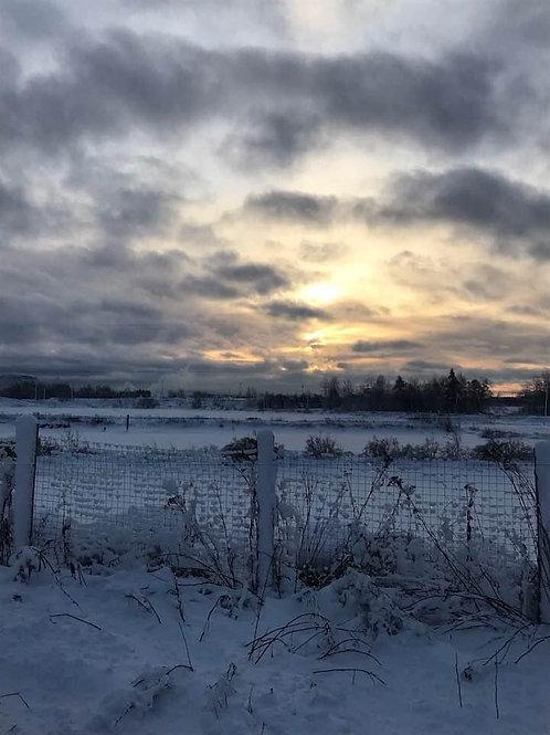 Frozen Sunrise (Thunder Bay) - March 2021