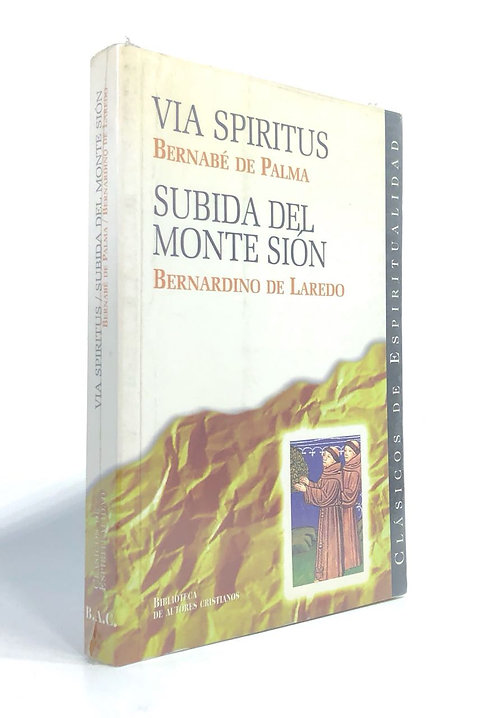 VIA SPIRITUS/SUBIDA DEL MONTE SION