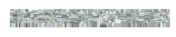 diamond club logo.png