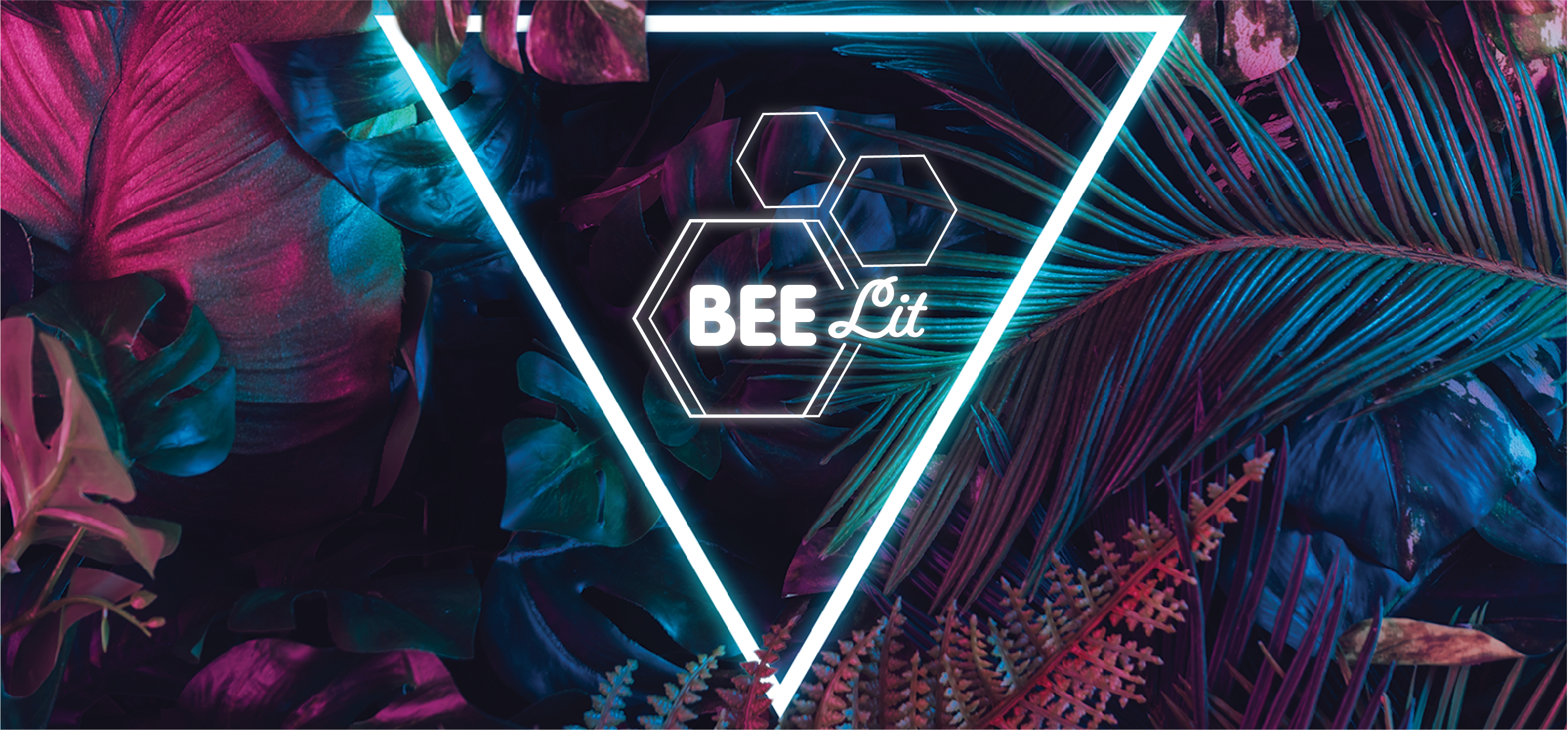 BEE LIT LANDING PAGE GRAPHIC