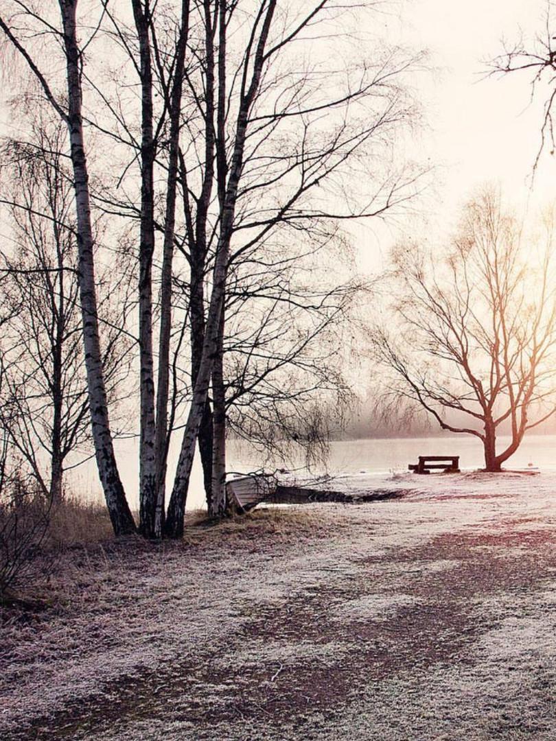 Eindruck Rügen im Winter