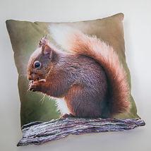 squirrel cushion-2.JPG