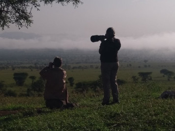 Birding and wildlife Safari in Kidepo Valley National Park.