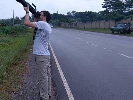 Bird Photography Safaris