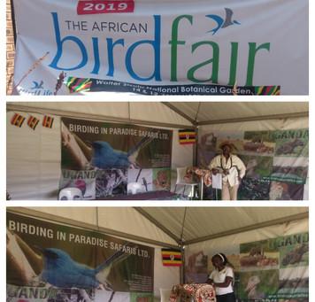 African Birdfair 2019