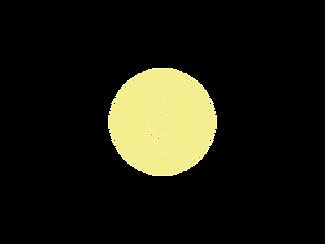logo TMO.png