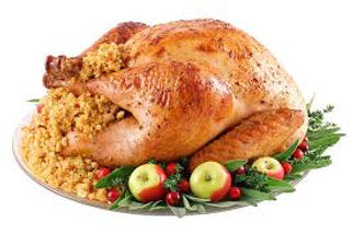 Thanksgiving turkey.jpg