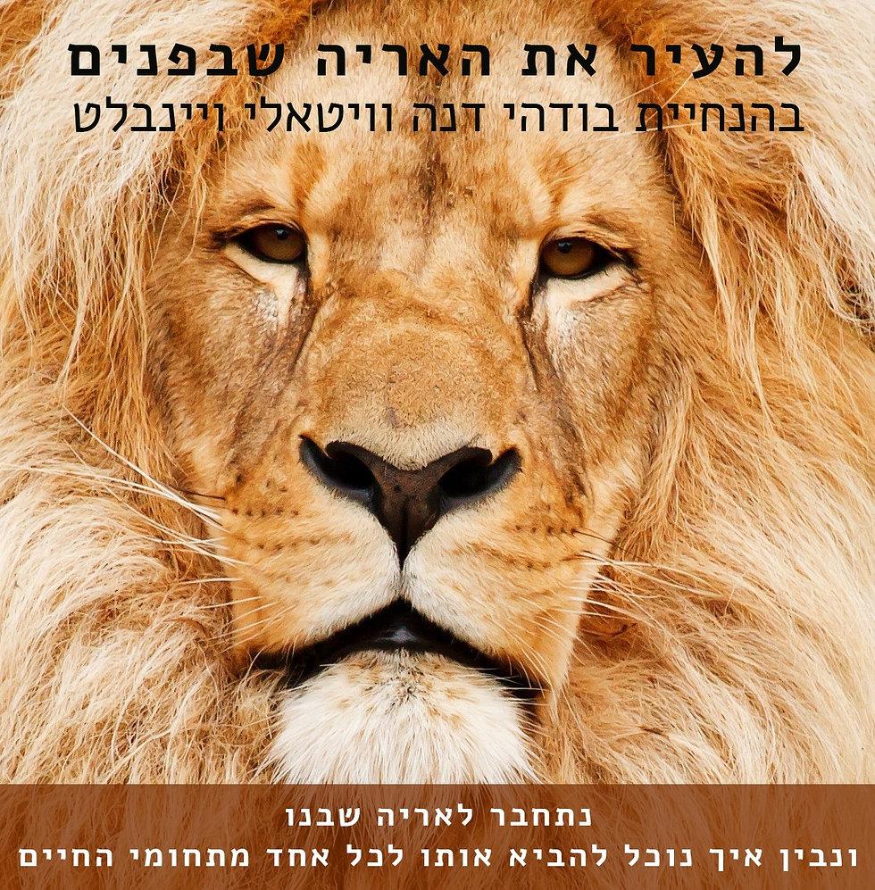 lion.jfif