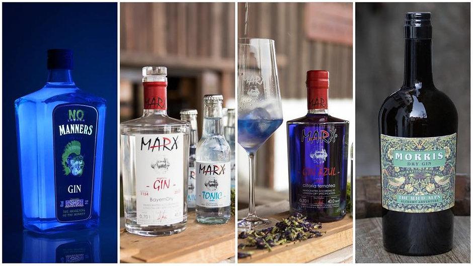 gin-degu FB Foto.jpeg
