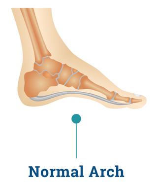 Neutral Foot