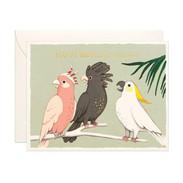Parrots-Birthday-Card_460x.jpg