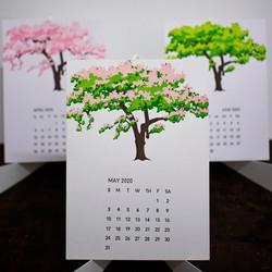 treepic2