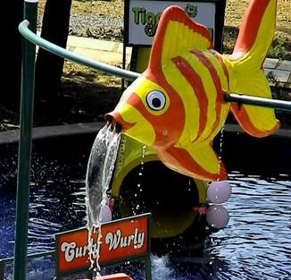 Flippy the Fish