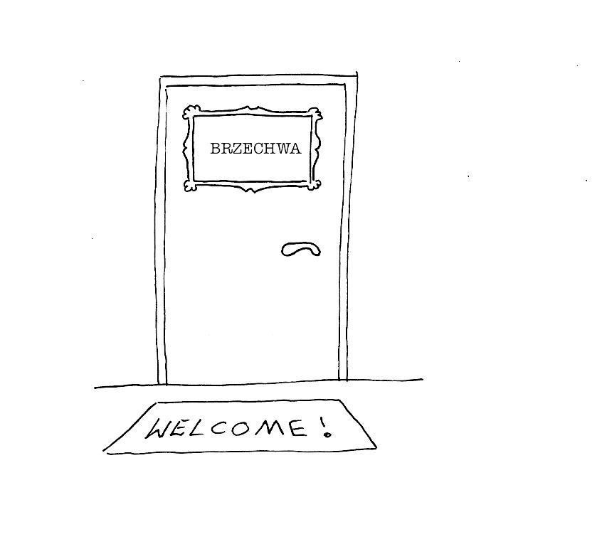 DOOR TEST BRZECHWA