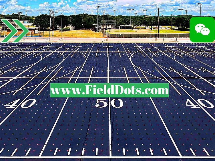 Copy of Field Dots New Edit.jpg