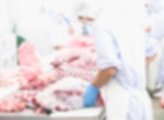 """i produttori della """"Porchetta di Ariccia"""" I.G.P. hanno mantenuto invariata negli anni la tradizione artigiana della preparazione della porchetta, tramandando di generazione in generazione l'arte di condire, aromatizzare, legare e predisporre la porchetta alla cottura al forno.  Particolare importanza riveste la professionalità e l'esperienza dei """"porchettari"""" ariccini che si adoperano quotidianamente a produrre la """"Porchetta di Ariccia"""". Molte sono le """"storiche famiglie"""", che ancora oggi lavorano con sistemi tradizionali la """"Porchetta di Ariccia"""". I figli o nipoti di questi """"porchettari"""" mantengono viva la produzione nel paese di Ariccia e lo stesso termine viene ancora oggi usato per apostrofare gli appartenenti alle famiglie dei produttori di porchetta."""