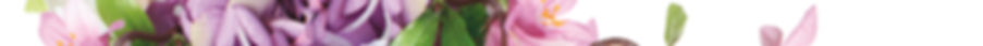 Floral header wide sm.png