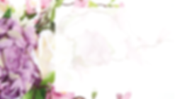 floral border 990 x 560.png