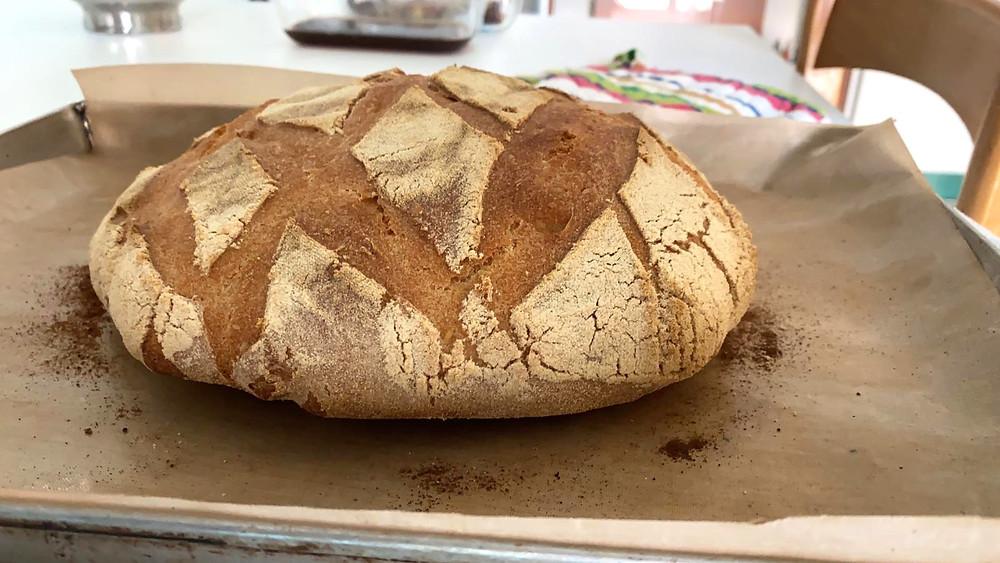 pane casereccio pane fatto in casa impastare