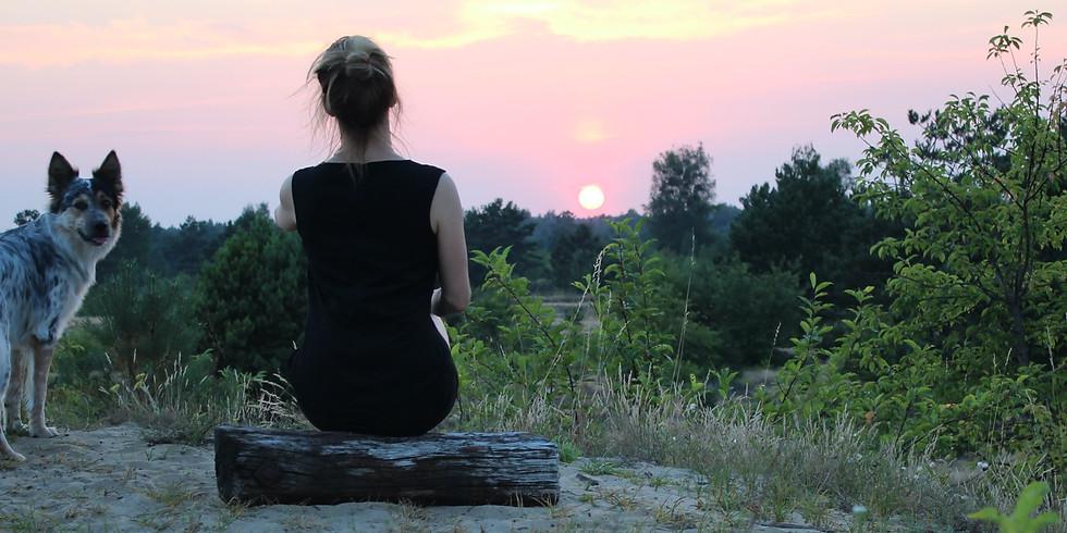 Magic Morning Meditation Live Session