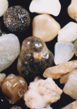 1134-12 South Australia, Rivoli Bay, bea