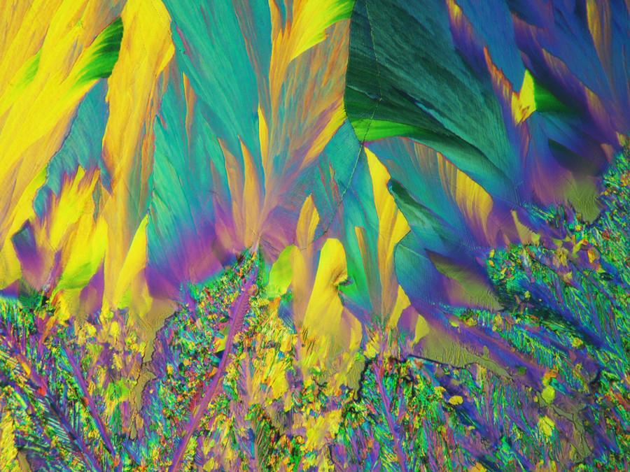 547-01 Saccharine, Stevia.jpg