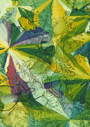 654-32 Waterglas, Inositol .jpg