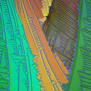380-25 TRISbase Trimethyl .jpg