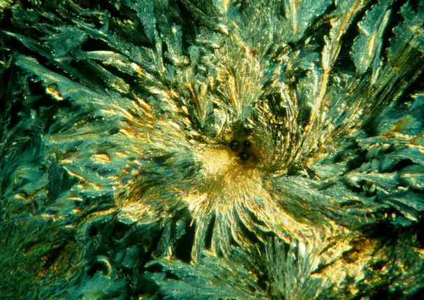 038-33 Ureum, Glycine.jpg