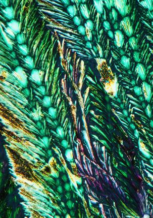 714-33 Borax, CetylA Hydrochinon.jpg