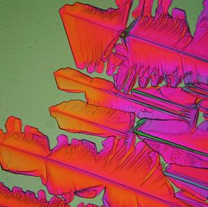 590-04 Resorcinol.jpg