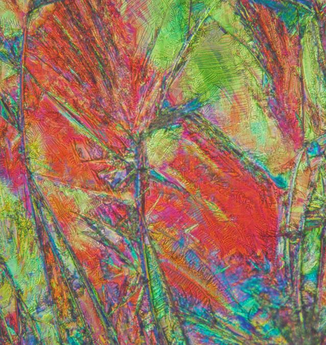 658-05 Hydrochinon, Ureum.jpg